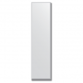 Зеркало настенное 40х160 (160х40) см с фацетом 15мм.